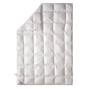 купить Пуховое одеяло демисезонное SoundSleep Air Soft