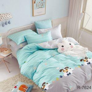 купить Постельное белье TAG R7624 frozi Голубой фото