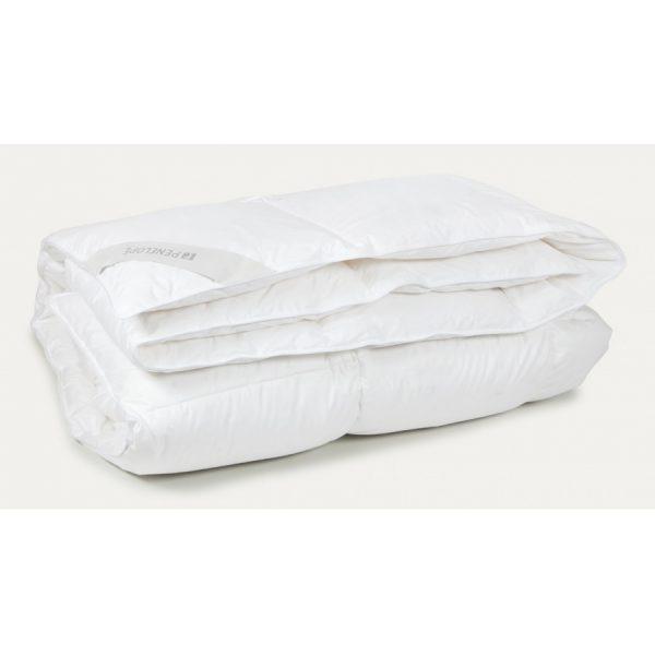 купить Одеяло Penelope - Gold New Пуховое